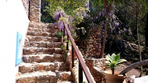 Jardin Mareseta DSC_0618